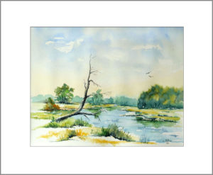 """"""" An der Oder"""", 40 x 50cm, Nr. 344"""