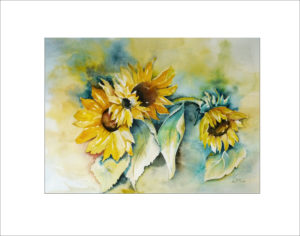 Sonnenblumen (Nr. 77)
