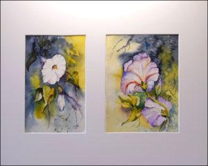 Windenblüten- 40 x50 cm (Nr 195 a)