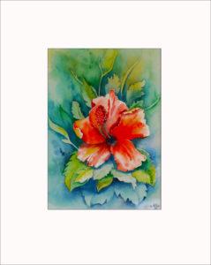 Hibiskusblüte – 40 x 50 cm (Nr. 103)