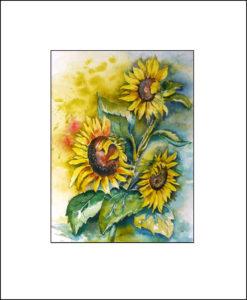 Sonnenblumen – 40 x 50 cm (Nr. 108)